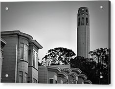 Coit Tower Acrylic Print