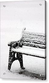 Cold Bench Acrylic Print by Jez C Self