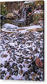 Cold Day At The Pond Acrylic Print by Mick Anderson