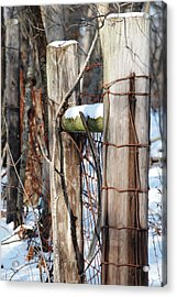 Cold Division Acrylic Print by Peter  McIntosh