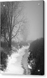 Cold Fog Acrylic Print