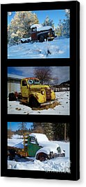 Cold Guys Acrylic Print by Idaho Scenic Images Linda Lantzy