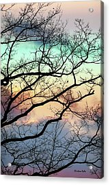 Cold Hearted Bliss Acrylic Print by Christina Rollo