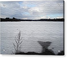 Cold Lake Acrylic Print by Evelyn Patrick