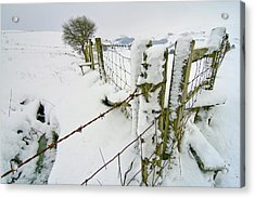 Cold Landscape Acrylic Print by Richard Outram