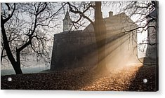 Cold Morning Acrylic Print by Davorin Mance