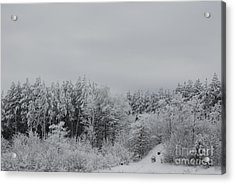 Cold Mountain Acrylic Print by Randy Bodkins