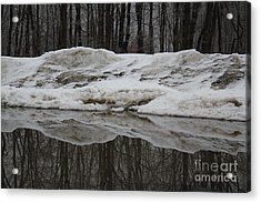 Acrylic Print featuring the photograph Cold Rain And Snow by Jesse Ciazza