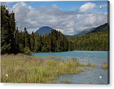 Cold River Marsh Acrylic Print