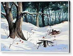 Cold Water Acrylic Print by Bob Hallmark