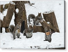 Cold Weather Can't Stop A Good Band Acrylic Print by Dan Friend