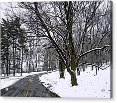 Cold Winter Day Acrylic Print by Skyler Tipton