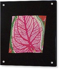 Coleus Acrylic Print