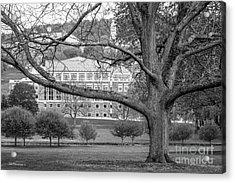 Colgate University Landscape Acrylic Print by University Icons