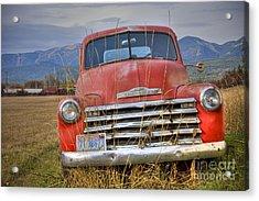 Collecting Weeds Acrylic Print by Idaho Scenic Images Linda Lantzy