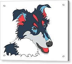 Collie Graphic Art - Dog Art - Wpap Acrylic Print by SharaLee Art