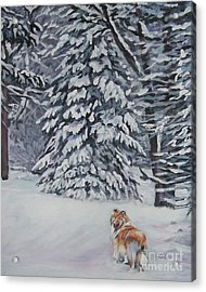 Collie Sable Christmas Tree Acrylic Print