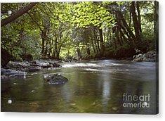 Colligan River 2 Acrylic Print
