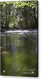 Colligan River 3 Acrylic Print