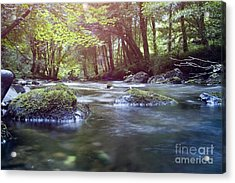 Colligan River Dream 1 Acrylic Print