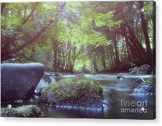 Colligan River Dream 2 Acrylic Print