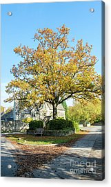 Coln St Dennis Acrylic Print by Tim Gainey