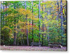Color Benches Acrylic Print
