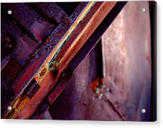 Acrylic Print featuring the photograph Color Burst.. by Al Swasey