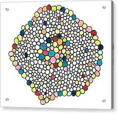Acrylic Print featuring the drawing Color Cells by Jill Lenzmeier