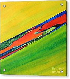 Color I Acrylic Print