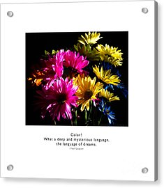 Acrylic Print featuring the photograph Color Language Of Dreams by Kristen Fox