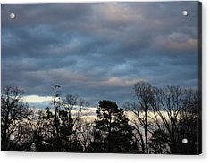 Color Of The Sky Acrylic Print by Lee Anderson