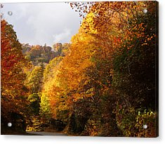 Color On The Blue Ridge Parkway Acrylic Print by Becky Erickson