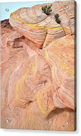 Acrylic Print featuring the photograph Color Swirls In Valley Of Fire State Park by Ray Mathis