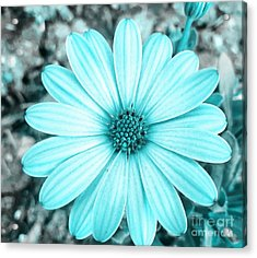 Color Trend Blue Blossom Acrylic Print