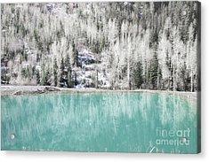 Colorado Aqua Woodland Forest Landscape Acrylic Print by Andrea Hazel Ihlefeld