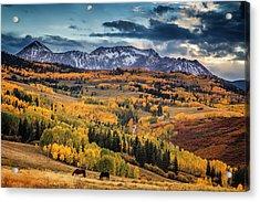 Colorado Autumn Acrylic Print