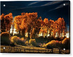Acrylic Print featuring the photograph Colorado Autumn Morning by Andrew Soundarajan