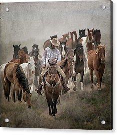 Colorado Cowboy Acrylic Print