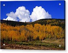 Colorado Fall 2 Acrylic Print by Marty Koch