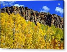 Colorado Fall 3 Acrylic Print by Marty Koch