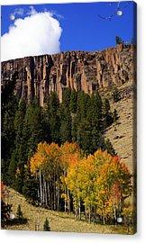 Colorado Fall 4 Acrylic Print by Marty Koch