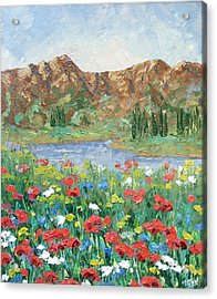 Colorado Acrylic Print