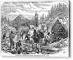 Colorado: Gold Mining, 1859 Acrylic Print by Granger