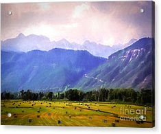 Colorado Harvest Watercolor  Acrylic Print