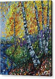 Glimpses Of Colorado Fall Colors Acrylic Print