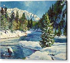 Colorado Pines Acrylic Print by David Lloyd Glover
