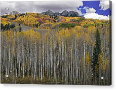 Acrylic Print featuring the photograph Colorado Splendor by Gary Lengyel