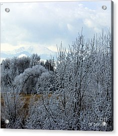 Colorado Springs Winter Acrylic Print