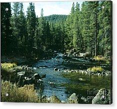 Colorado Stream1 Acrylic Print
